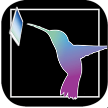 Hummingbird Digital logo